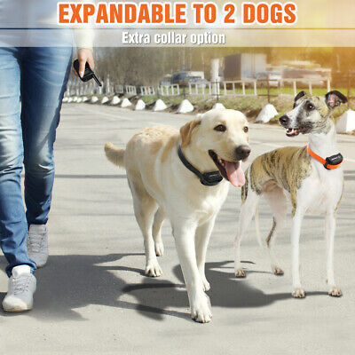 Petrainer Waterproof Rechargeable Dog Training Collar Shock Collar with Remote 8