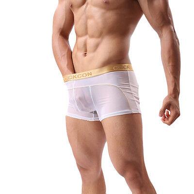 Boxer Transparent Sexy Homme Thong Man Underwear Uomo Lenceria M L Xl Xxl 4
