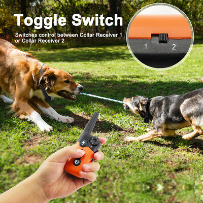 Ipets 900ft Remote Dog Shock Collar Rechargeable Waterproof Dog Training Collar