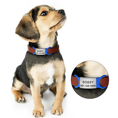 Pet Cat Dog ID Tags Personalized Engraved Name Tag Slide On Collar Tag for Puppy 11