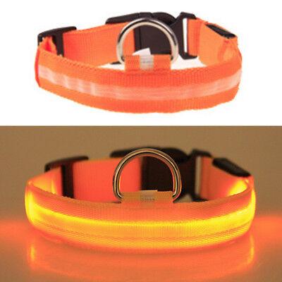 USB Rechargable LED Dog Pet Collar Flashing Luminous Safety Light Up Nylon 10