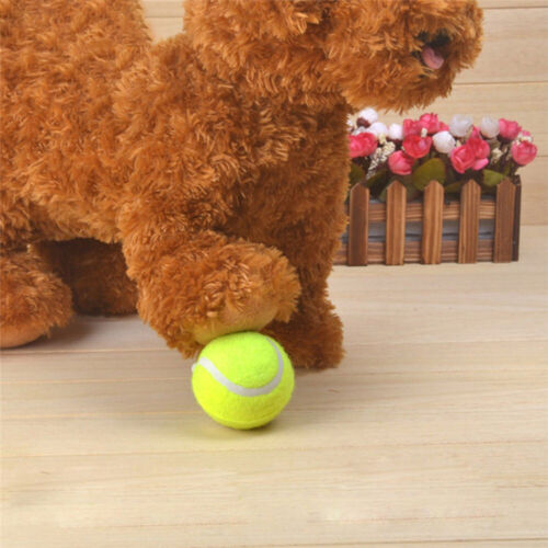 Big Giant Pet Dog Puppy Tennis Ball Chew Toy Thrower Chucker Launcher Toy 12