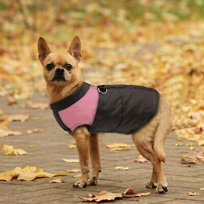Winter Dog Clothes Small Large Big Dogs Waterproof Pet Coats Vest Jacket 10 Size 11
