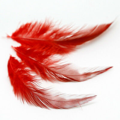 50Pcs Fluffy Rooster Tail Feathers For DIY Craft/Dress/Carnival Party Decoration 12