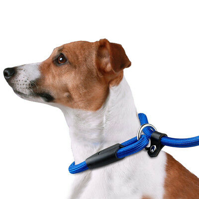 Nylon Rope Slip Dog Lead 5ft Pet Collar Training Show Leash Red Black Blue Brown 7