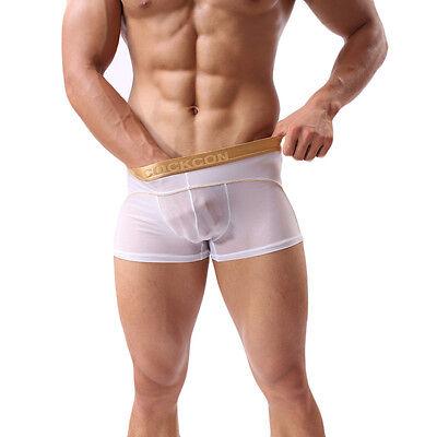 Boxer Transparent Sexy Homme Thong Man Underwear Uomo Lenceria M L Xl Xxl 6