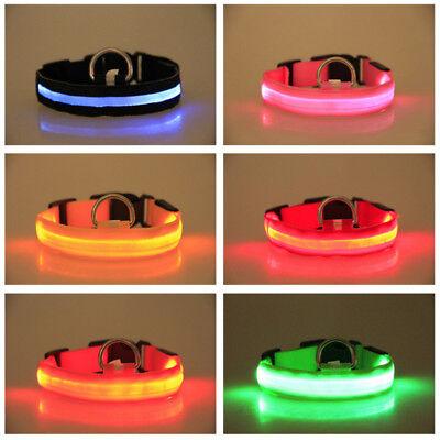 USB Rechargable LED Dog Pet Collar Flashing Luminous Safety Light Up Nylon 3