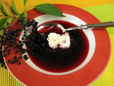 Elderberry Dried Fruit ( Sambucus Nigra ) - Health Embassy 7