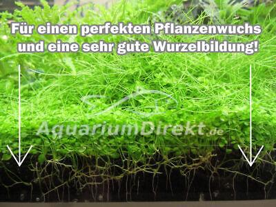(1,67€/1kg) Aquarium Nährboden Bodengrund 6 KG für 180 Liter Pflanzen Dünger 3