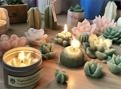 Succulent Cacti Candle Mold Moulds Soap Molds DIY Craft Plaster Silicone Molds 2
