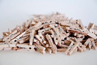 100x25mm MINI WOOD WOODEN PEGS NATURAL CRAFT WEDDING CLOTHES PIN LINE PHOTO BABY 11