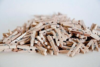 100x25mm MINI WOOD WOODEN PEGS NATURAL CRAFT WEDDING CLOTHES PIN LINE PHOTO BABY 2