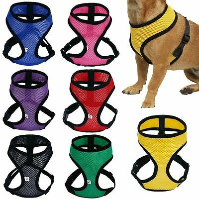 Pet Cat Puppy Dog Harness Soft Mesh Vest Walk Collar Safety Leash Strap Cute
