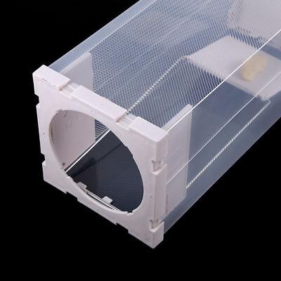 Professional Rodent Box Trap Station - Rat Mice Mouse - No Poison Bait Inc.