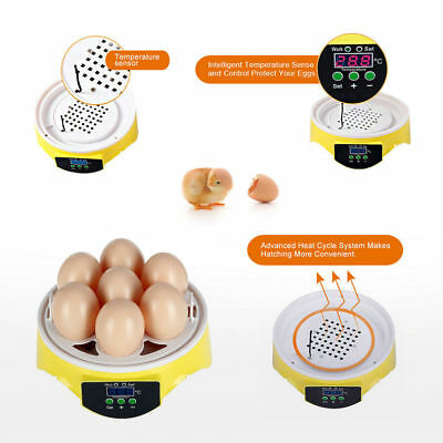 Automatic Mini Incubator 7 Egg Poultry Hatcher Digital Bird Temperature Control 10