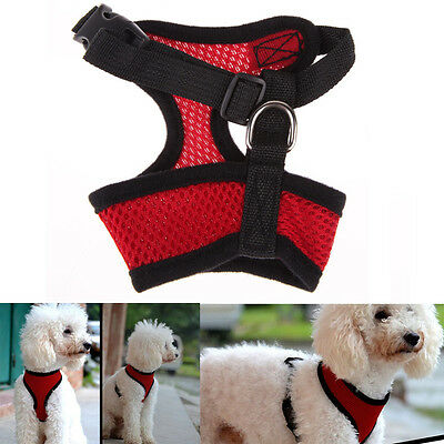 Soft Mesh Pet Harness Pet Control Walk Collar Safety Strap Dog Cat Vest CA RR 7