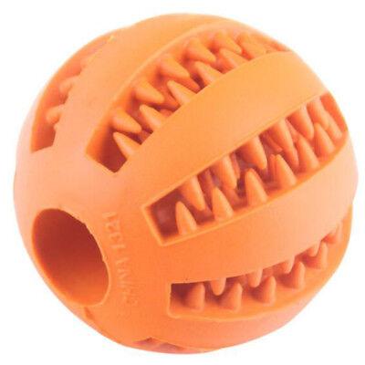 Pet Dog Puppy Cat Training Dental Toy Rubber Ball Chew Treat Dispensing Holder B