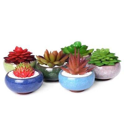 NEWEST Ice-Crack Glaze Flower Ceramics Succulent Plant Mini Pot Garden Flowerpot 7