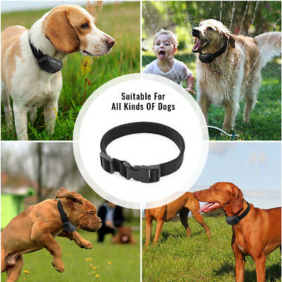 Electric Remote Dog Training Collar 330Yard Rechargeable Shock Collar For 2 Dogs 10