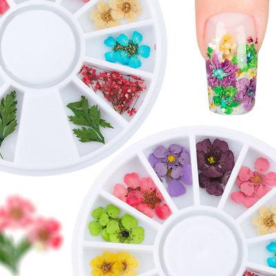 3D De uñas Arte Consejos Cristal Brillo Diamantes de imitación Decoración Rueda 5