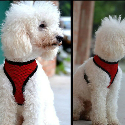 Soft Mesh Pet Harness Pet Control Walk Collar Safety Strap Dog Cat Vest CA RR 8