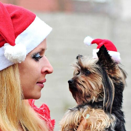 Christmas pet santa hat small puppy cat dog xmas holiday costume ornamentY lq 2