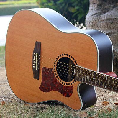 Hummingbird Akustikgitarre Celluloid Pickguard Kratzplatte Pick Guards  ^