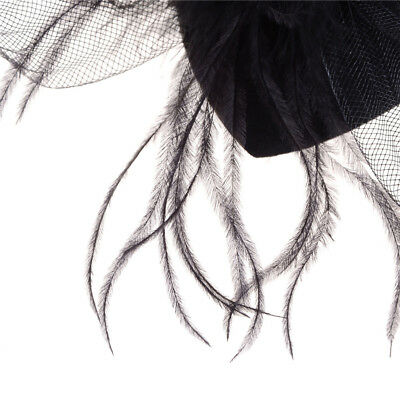Elegant Lady Top Net Mesh Birdcage  Feather Fascinator Hairpin Hat Clip YNFK 4
