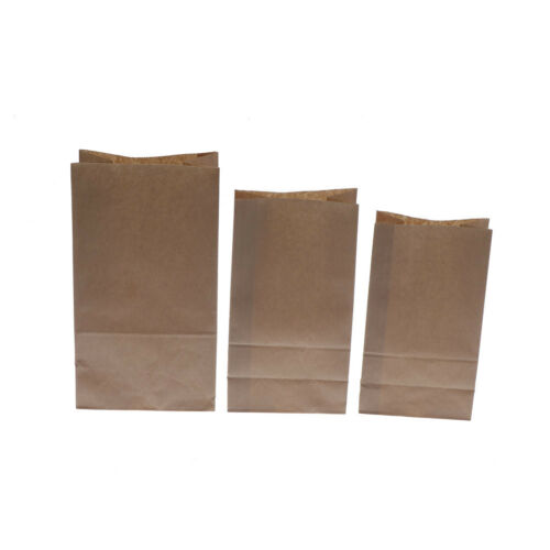 10pcs Food-Grade Kraft Paper Gift Bags Craft Packing for Food Snace and Bread S/&