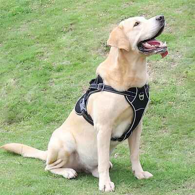 Tactical Dog Excursion K9 Training Patrol Vest Harness, Extra Large-Medium Size 4