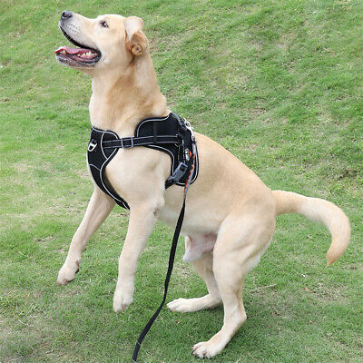 Tactical Dog Excursion K9 Training Patrol Vest Harness, Extra Large-Medium Size 6
