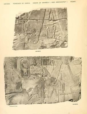 Ancient Egyptian Hieroglyphics - Papyrus Language Egypt - 145 Rare Books On Dvd! 8
