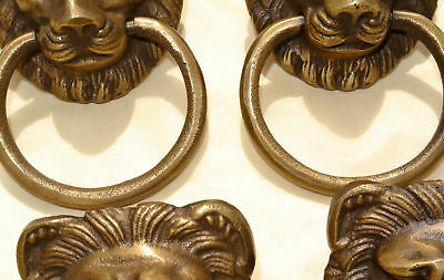 4 LION pulls handles Small heavy  SOLID BRASS old style bolt house antiques 2