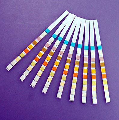 100 GP/DOCTOR URS8 Urine Test Strips Ketone pH Gluc Blood Prot + Infection / UTI 3