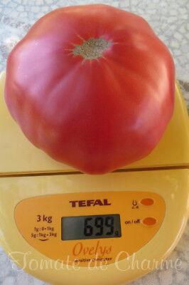 10 graines de tomate très ancienne Rosa de Barbastro Une tomate de luxe!