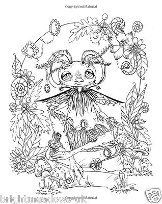 1 Of 5FREE Shipping Lacy Sunshine Enchanted Kingdom Adult Colouring Book Fantasy Fairies Dragons