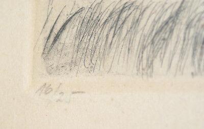 Gravure - Reichmann - Campagne lacustre - 44x35 cm - encadrement ronce de noyer 3