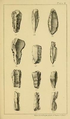 178 Rare Pre-Historic Man Books On Dvd- Primitive Human Fossils Stonehenge Flint 4
