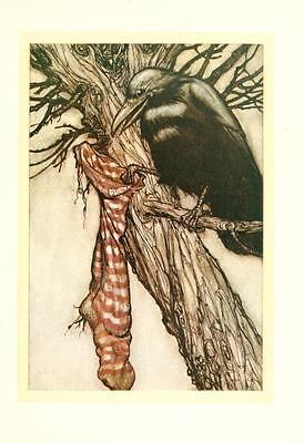 41 Vintage Arthur Rackham Illustrated Childrens Books - Dvd! Fairy Tales Fantasy 9