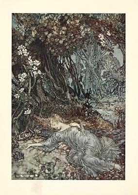 41 Vintage Arthur Rackham Illustrated Childrens Books - Dvd! Fairy Tales Fantasy 7