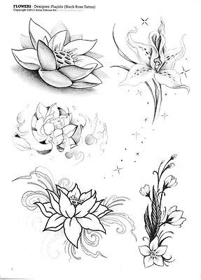 Tattoovorlagen Blumen Flower Motive Flash Book Dvd Top Motive