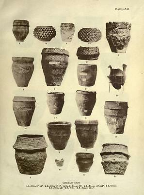 178 Rare Pre-Historic Man Books On Dvd- Primitive Human Fossils Stonehenge Flint 8