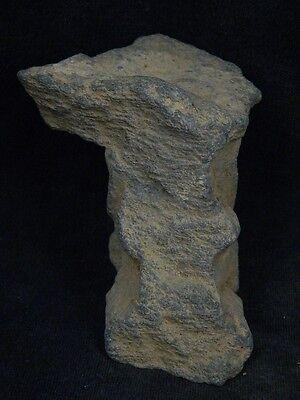 Ancient Stone Winged Lion Gandhara/Gandharan 100 AD #STN385 10