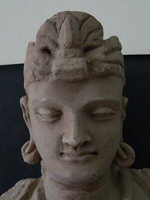 Ancient Huge Size Stucco Sitting Bodhasattva Gandhara/Gandharan 200 AD  #IK846 6
