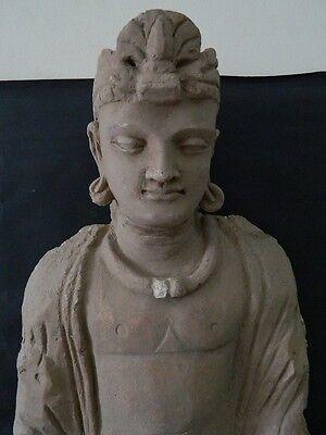 Ancient Huge Size Stucco Sitting Bodhasattva Gandhara/Gandharan 200 AD  #IK846 2