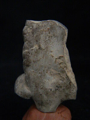 Ancient Teracotta Mother Goddess Torso Indus Valley 2000 BC  #TR15218