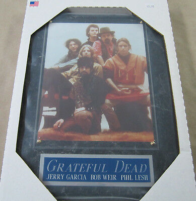 #1 Fan Grateful Dead Framed 8 X 10 Photo 12 X 15 Wall Plaque Display