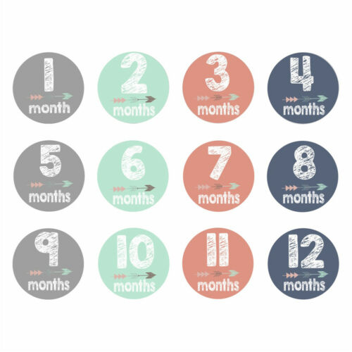 New Baby Pregnant Women Monthly Photograph Stickers Month 1-12 Milestone Sticker 3