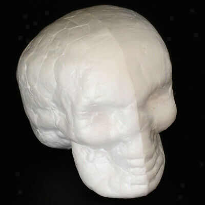 10 Stück 55mm Halloween Styropor kopf Schädel Kopf Totenkopf Totenschädel