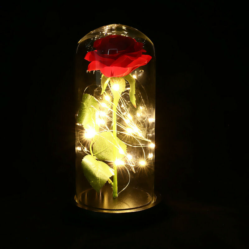 LED Lighted Beauty and the Beast Enchanted Rose Glass Dome Love Gift for Women 2